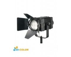 CAME-TV Boltzen 60w Fresnel Fanless Focusable Led Bi-Color