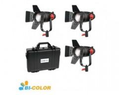 CAME-TV 3 Pc Boltzen 30w Fresnel Fanless Focusable LED Bi-Color With Bag