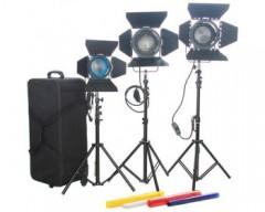 CAME-TV 2pcs 1000W+1pcs 650W Fresnel Tungsten Spot Video Light Studio