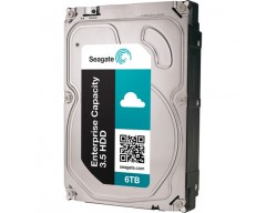 Seagate 6TB (7200RPM) 128MB Server S-ATA3