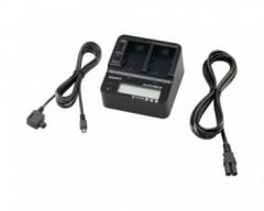 Sony AC-VQV10.CEE Alimentatore/Caricabatterie doppio Sony - Batterie InfoLITHIUM serie V -H - P