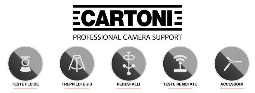 Cartoni Store Italy