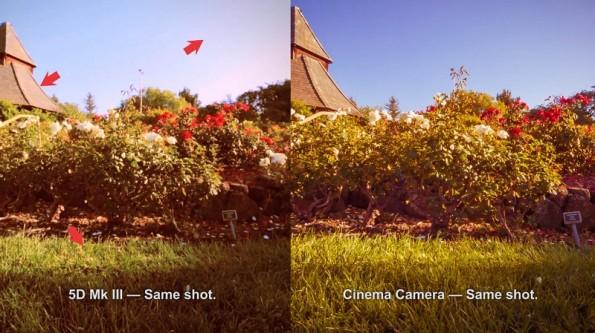 HOME > 5D Mark III o Blackmagic Cinema Camera ?